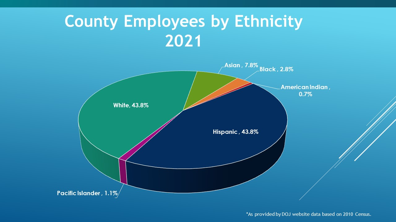 County Employees by Ethnicity 2021
