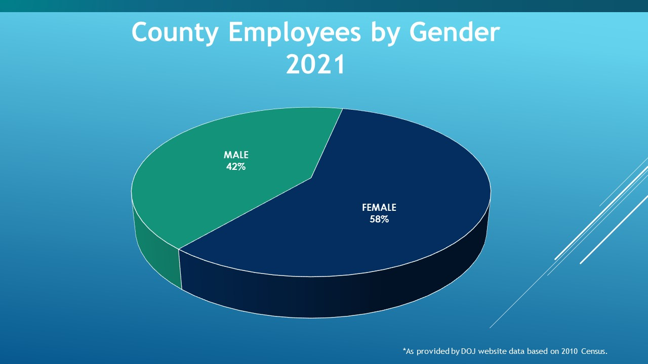 County Employees by Gender 2021